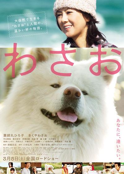 ดูหนัง Wasao (2011) วาซาโอะ ซับไทยเต็มเรื่อง หนังเอเชียดราม่า