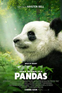 ดูสารคดี Pandas (2018) ซับไทยเต็มเรื่อง