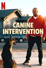 ดูซีรี่ย์ Netflix Cali K9 (Canine Intervention ) (2021) สุนัขบำบัด