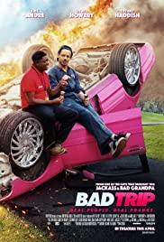 ดูหนัง Netflix Bad Trip (2020) ทริปป่วนคู่อำ
