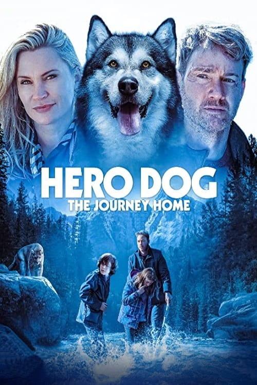 ดูหนังใหม่ Against the Wild The Journey Home (Hero Dog: The Journey Home) (2021)