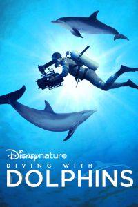 ดูหนังฟรีออนไลน์ Diving with Dolphins (2020) มาสเตอร์ HD